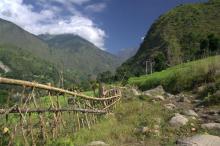 Image. Пішохідний туризм. В предгір'ях Гималаїв